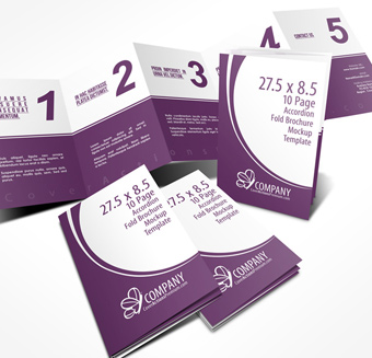 5 panel 5 5 x 8 5 accordion fold brochure mockup cover actions
